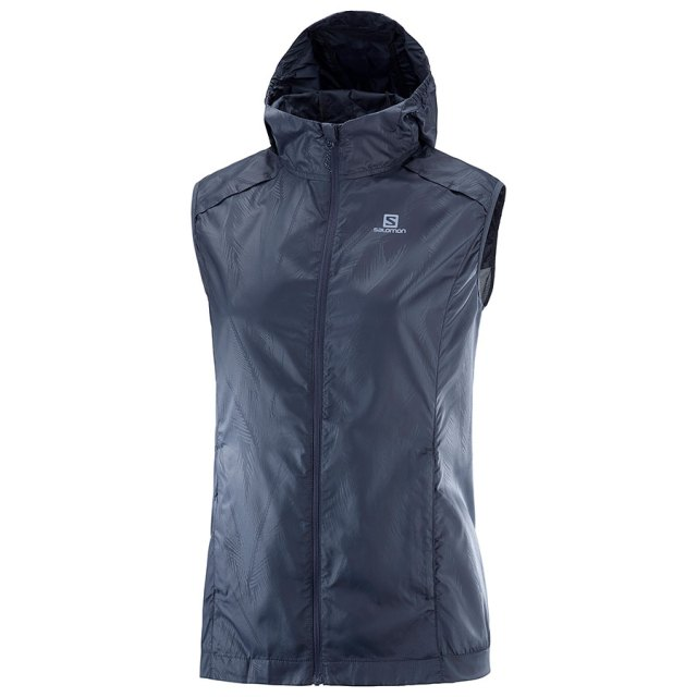wind vest